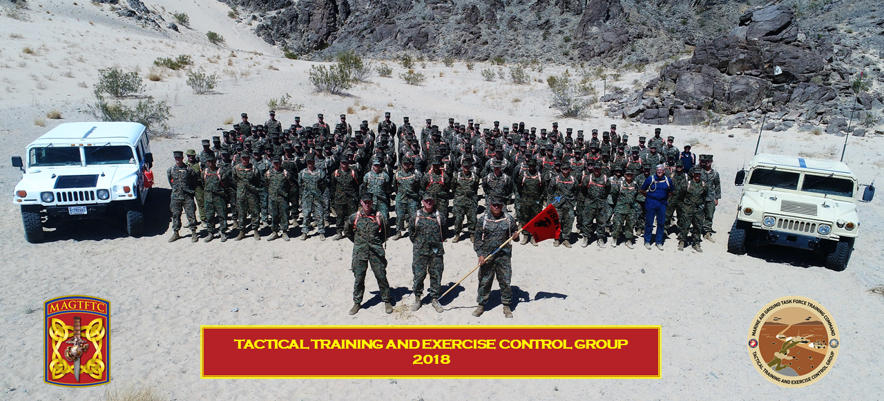 Tactical Training Exercise Control Group